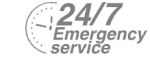 24/7 Emergency Service Pest Control in North Cheam, Stonecot Hill, SM3. Call Now! 020 8166 9746